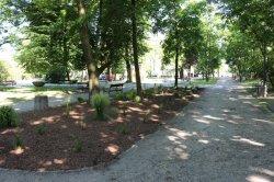 Nowe zielone elementy wParku Miejskim